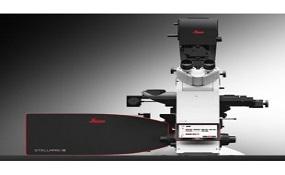 Leica STELLARIS 5 & STED 激光共聚焦显微系统