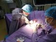 内分泌肾病内科成功完成首例自体动静脉内瘘成形术
