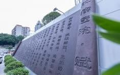 【我们的2020】2020年重庆大学附属肿瘤医院十大新闻