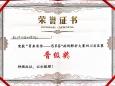 重庆大学附属肿瘤医院胃肠肿瘤中心团队成功晋级CSCO病例解析大赛总决赛